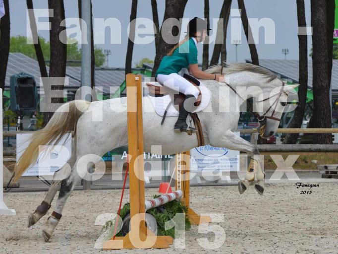 Salon équitaine de Bordeaux 2015 - Concours Obstacle Amateurs