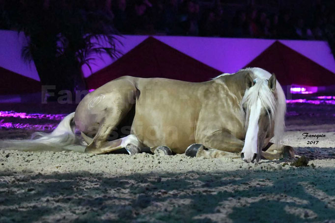 Cheval Passion 2017 - gala des Crinières d'OR - GARI ZOHER - 07