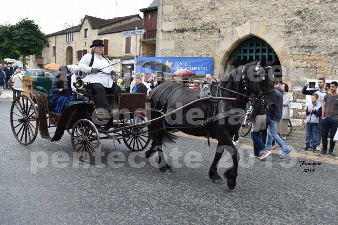 Défilé de calèches anciennes dans les rues de Villeneuve d'Aveyron  le 09 Juin 2019 - Cheval de MERENS