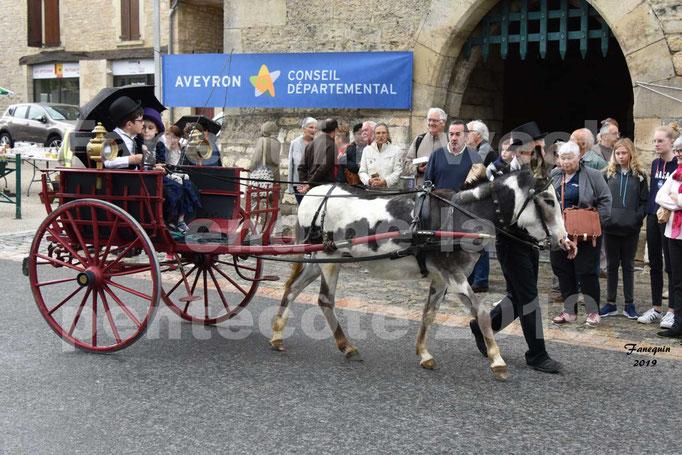 Défilé de calèches anciennes dans les rues de Villeneuve d'Aveyron  le 09 Juin 2019 - Âne pie & calèche 2 roues