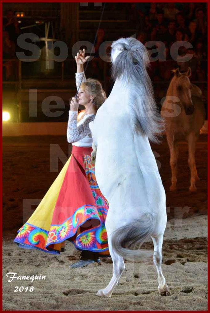 """Spectacles Équestres des """"Nuits Équestres""""  de la Féria de BÉZIERS 2018 - Sylvie WILLMS & ses chevaux en liberté - 13"""