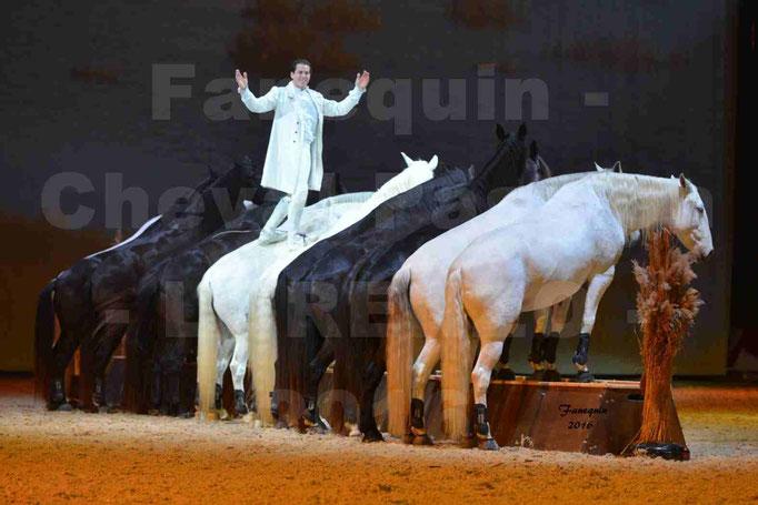 """Cheval Passion 2016 - Spectacle les Crinières d'OR - LORENZO """"Blanc"""" - représentation du 23 janvier 2016 - 090"""