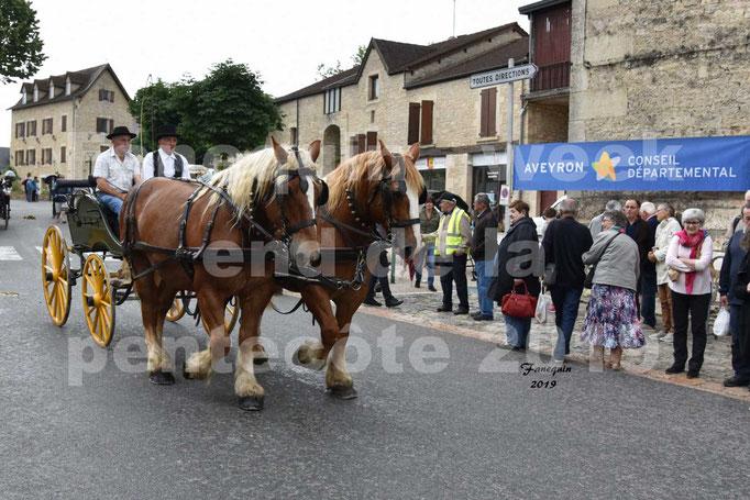 Défilé de calèches anciennes dans les rues de Villeneuve d'Aveyron  le 09 Juin 2019 - Chevaux en paire trait
