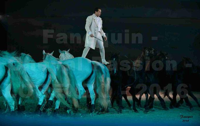 """Cheval Passion 2016 - Spectacle les Crinières d'OR - LORENZO """"Blanc"""" - représentation du 20 janvier 2016 - 40"""