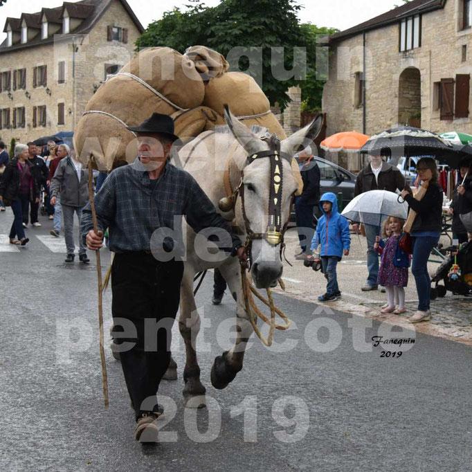 Défilé de calèches anciennes dans les rues de Villeneuve d'Aveyron  le 09 Juin 2019 - Mûle avec bat