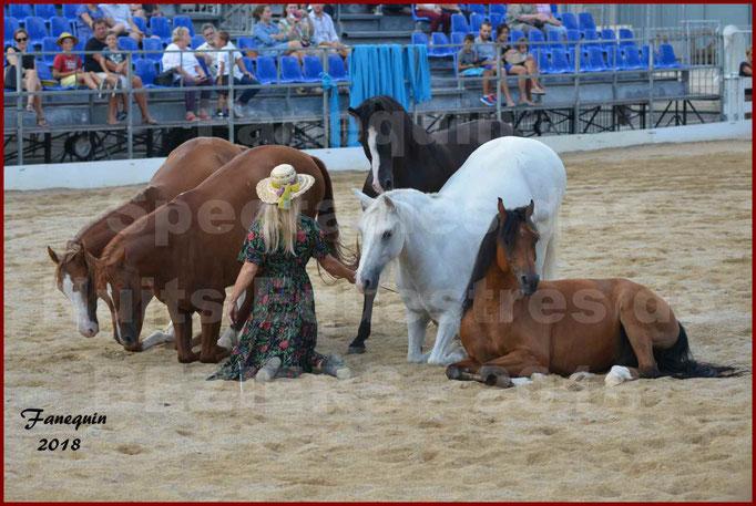 """""""Nuits Équestres""""  de la Féria de BÉZIERS 2018 - Spectacle en journée - Sylvie WILLMS & ses chevaux en liberté - 12"""