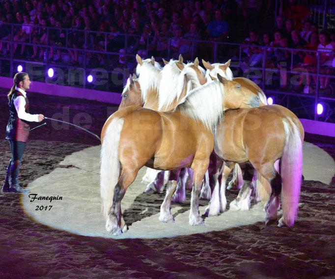 """Féria de BEZIERS 2017 - Spectacle """"Nuits Equestres"""" - 6"""