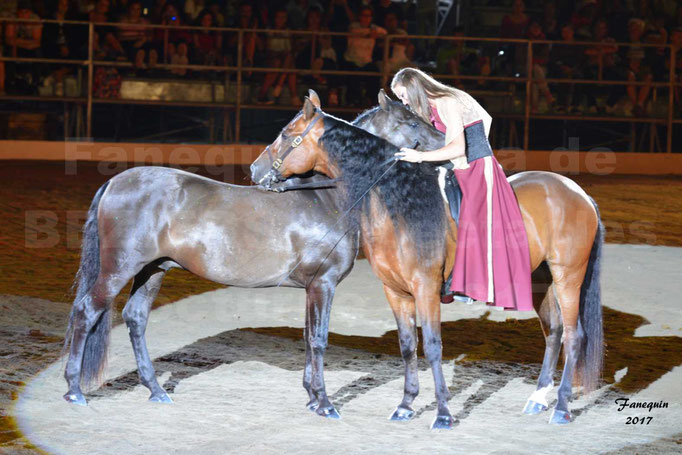"""Féria de BEZIERS 2017 - Spectacle """"Nuits Equestres"""" - 4"""