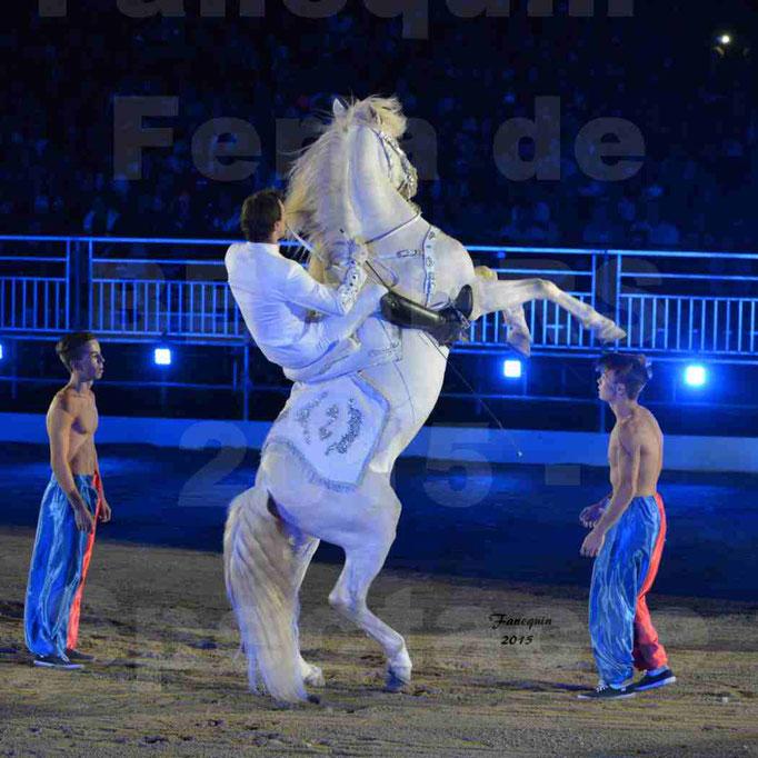 Nuits Équestres de la Féria de Béziers 2015 - Cavalier et cheval blanc