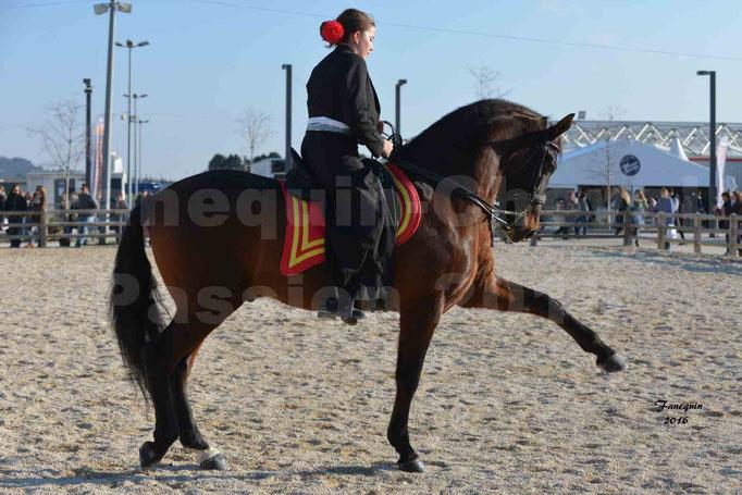 Cheval Passion 2016 - FICA Saint Gilles