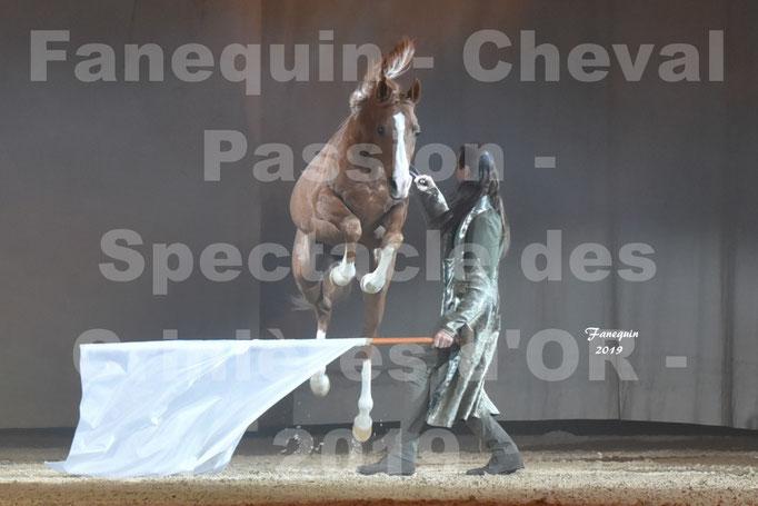 Cheval Passion 2019 - Spectacle des CRINIÈRES d'OR - Frédéric PIGNON & Cheval Alezan en liberté - 17