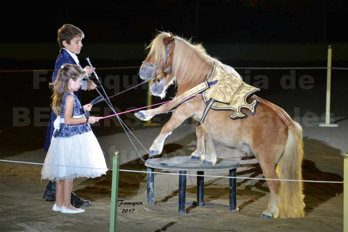 """Féria de BEZIERS 2017 - Spectacle """"Nuits Equestres"""" - 1"""