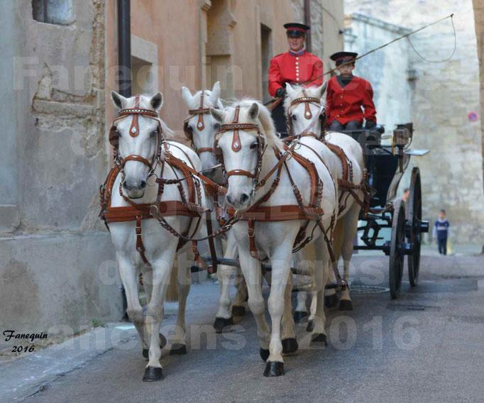 Défilé dans les rue d'UZES de calèches anciennes - attelage team (4 chevaux Camargues)
