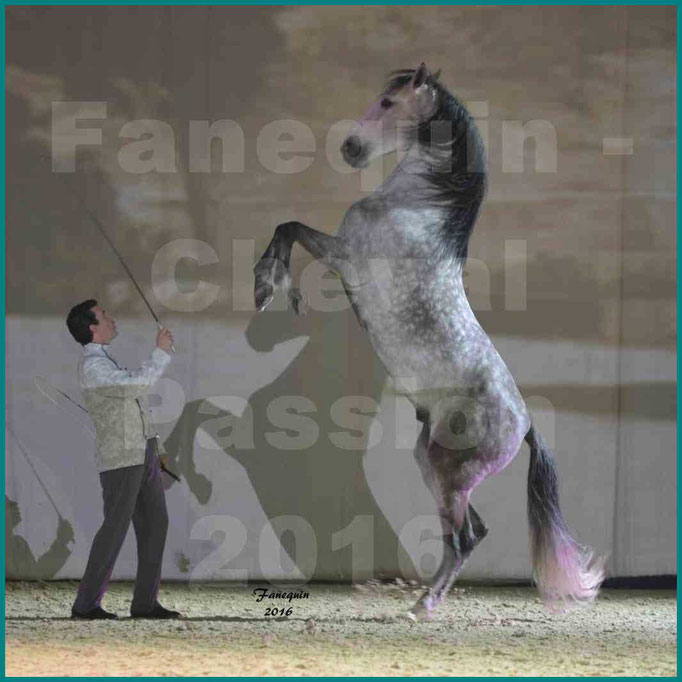 Cheval Passion 2016 - MISEC - Vincent LIBERATOR