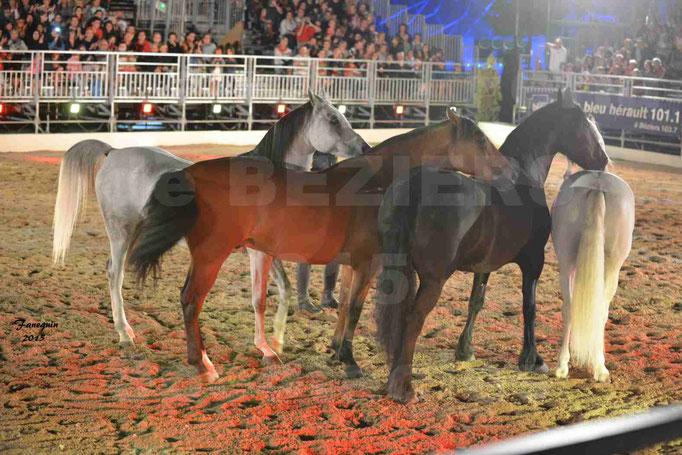 Nuits Équestres de la Féria de Béziers 2015 - Artiste équestre et chevaux en liberté