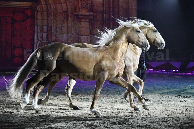 Cheval Passion 2017 - gala des Crinières d'OR - GARI ZOHER - 01