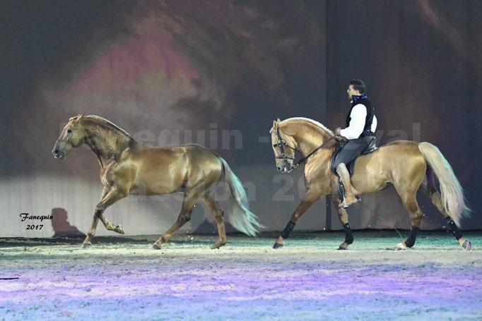 Cheval Passion 2017 - gala des Crinières d'OR - GARI ZOHER - 19