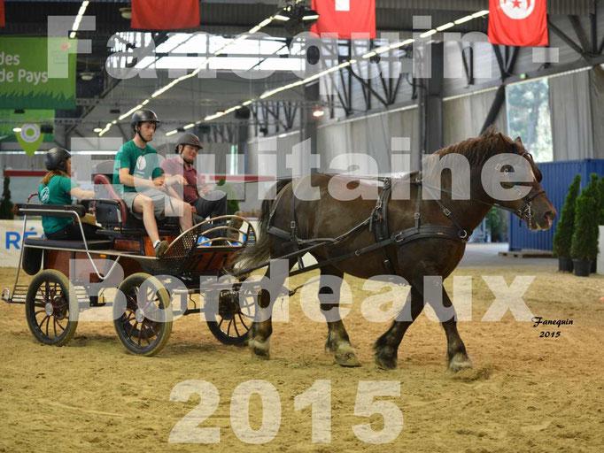 Salon équitaine de Bordeaux 2015 - Démonstration Attelage simple cheval de trait