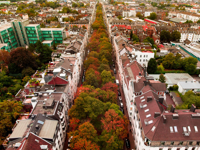 #80 Oppenhofallee im Herbst