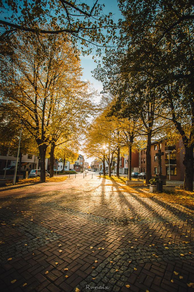 W116 - Lindenplatz im Herbst
