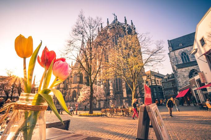 Frühlingsblumen eines Restaurants am Münsterplatz