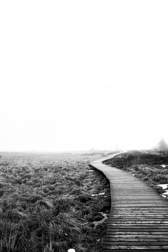 Das Polleurvenn im Nebel