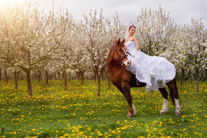 Braut reitet auf Pferd