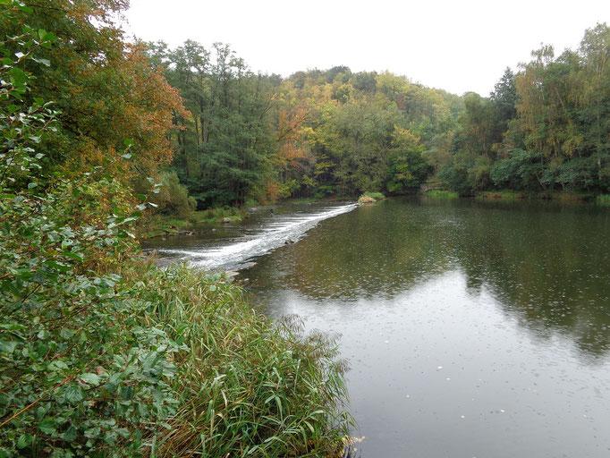 Fluss Thaya - Dyje in Tschechien