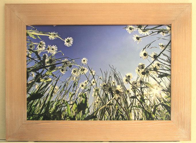 Größe 74x54 cm Preis 95€