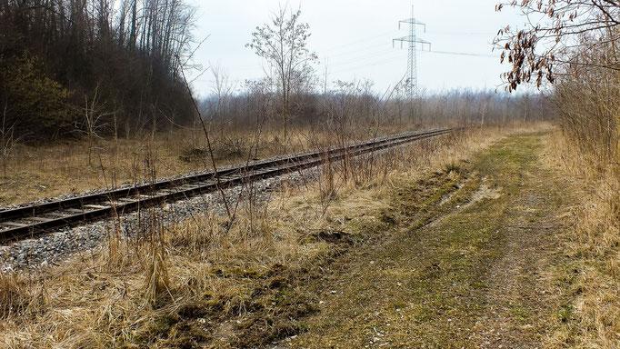 neues Gleis zur Westsächsische Entsorgungsgesellschaft