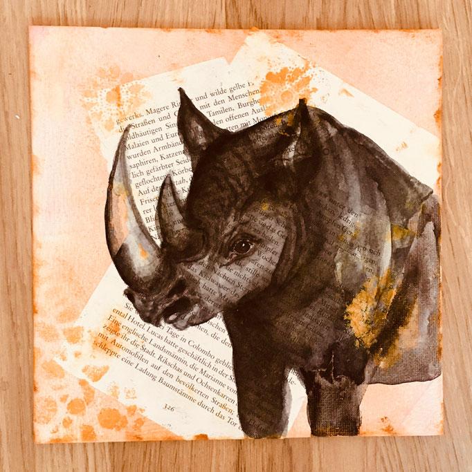 """Buchbild"" - Nashorn / 25 x 25 cm (Acquarell)"