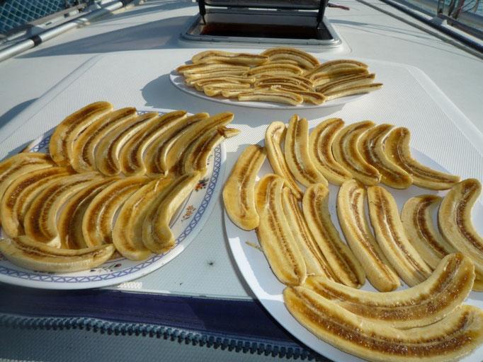 Secamos plátanos porque no podemos comerlos todos