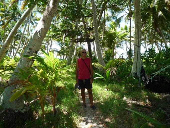Camino en la isla