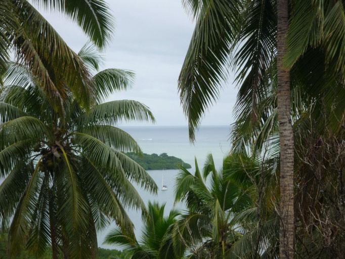 Vistas desde arriba. El Caps Tres entre la vegetación