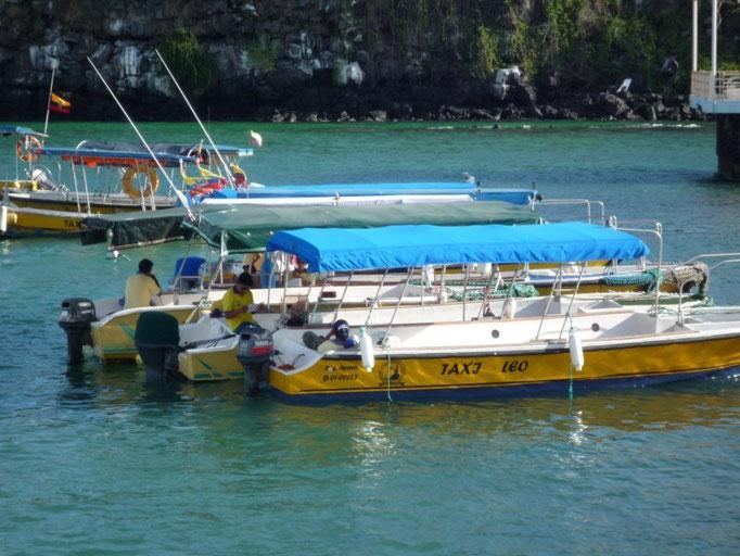 Los water taxis