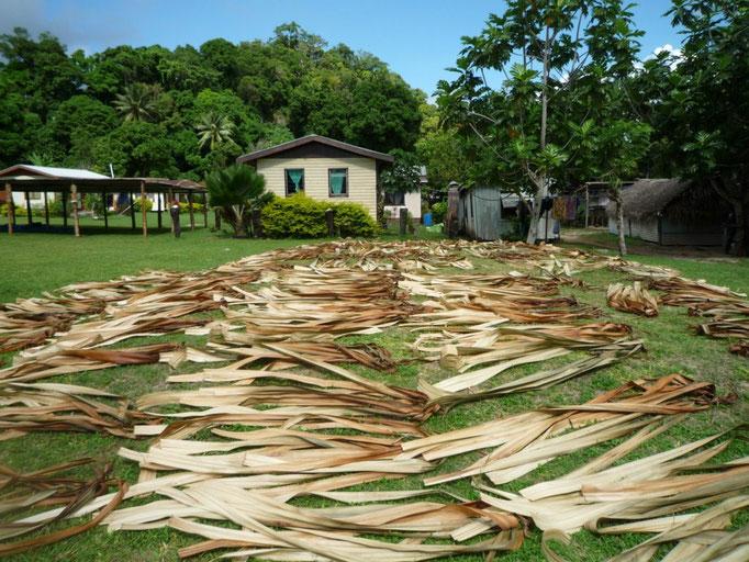 Las ramas se hierven, se secan y luego se estiran para confeccionar las alfombras