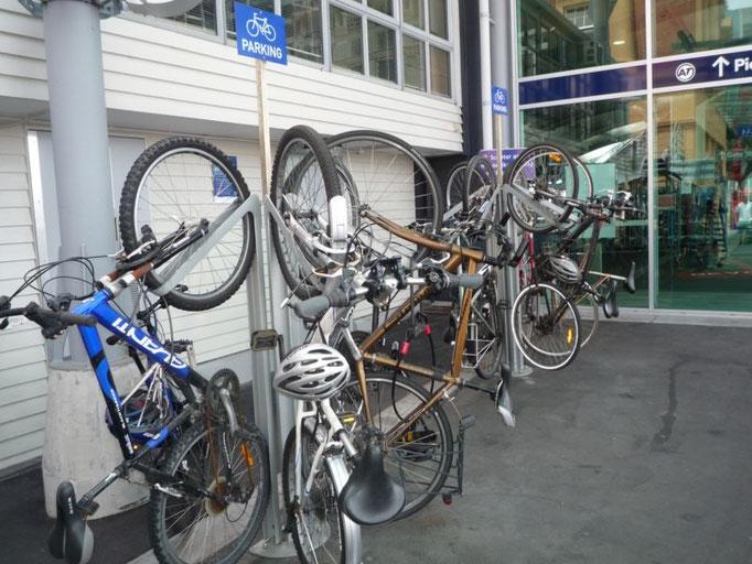 Bicicletas por doquier