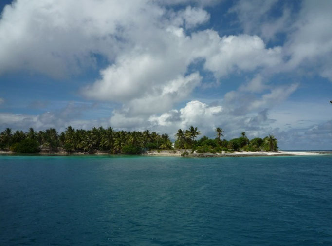 La isla promete