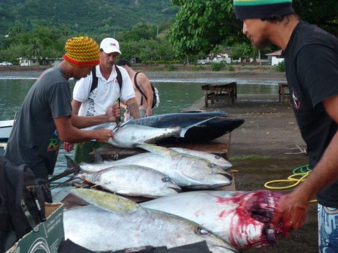 Pescado recién traído
