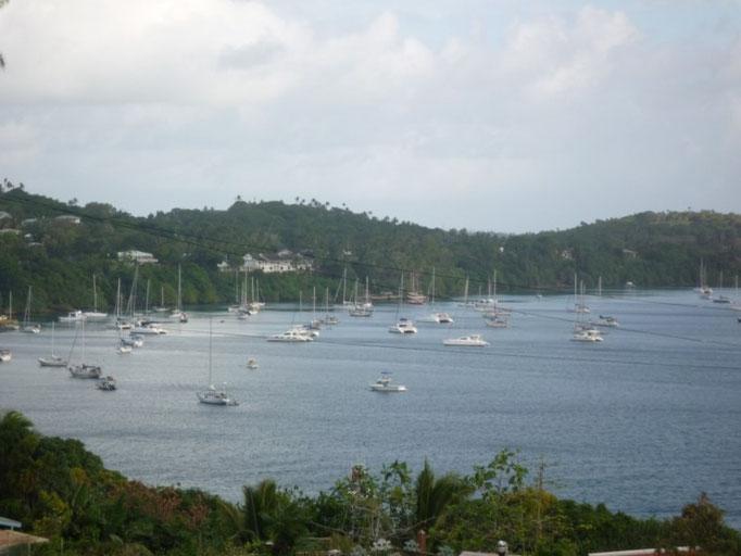 Bahía de Neiafu con cientos de barcos fondeados o a boya