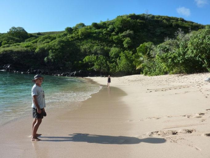 Paseos por la playa