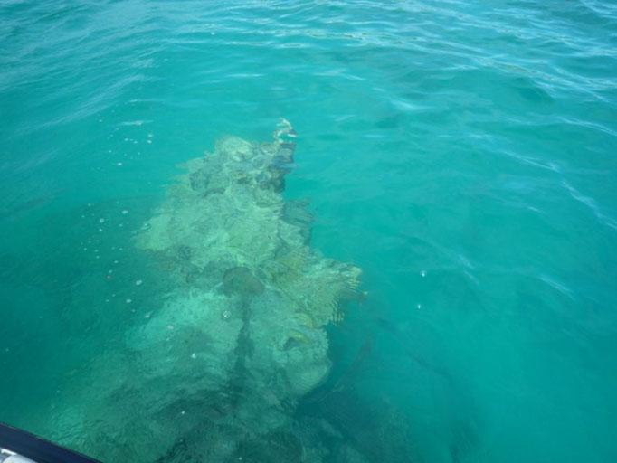 Peligros bajo el agua