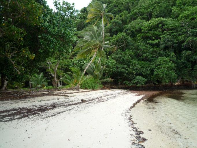 Caminata cortita a la playa del otro lado de la isla