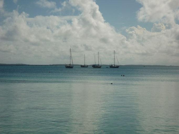 Los barcos en un entorno mágico