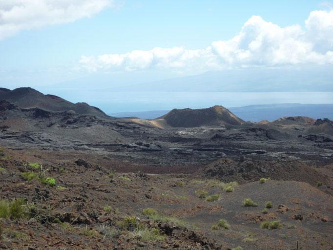 El paisaje de Volcán Chico