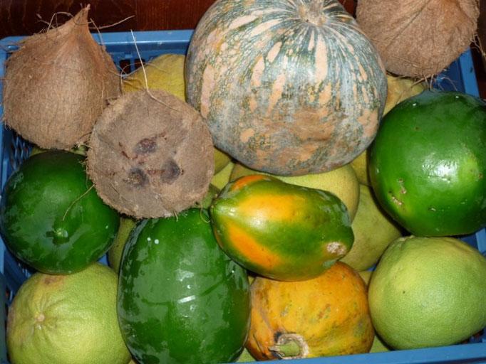 Pomelos, cocos, papayas, calabazas... la despensa está llena