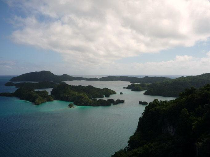 Bay of Islands desde lo altooooo. Excursión