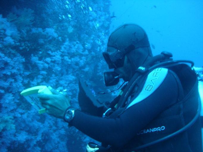 El instructor dando instrucciones con su pizarra underwater