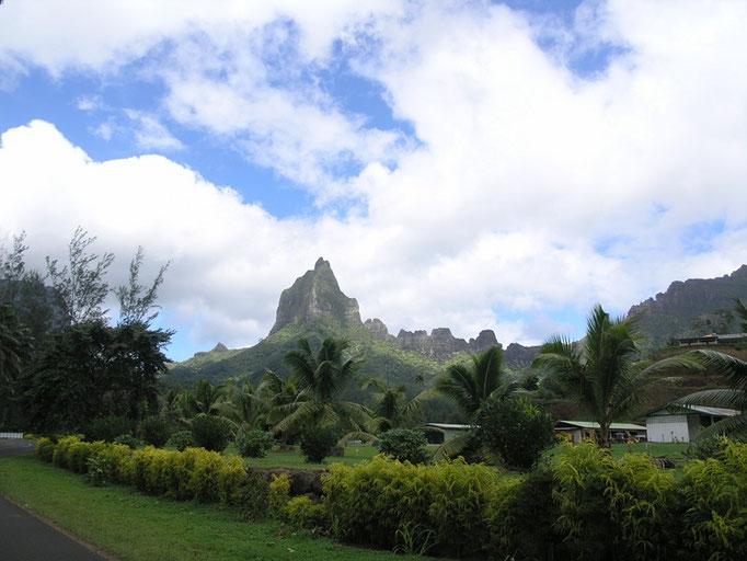 el paisaje de la isla