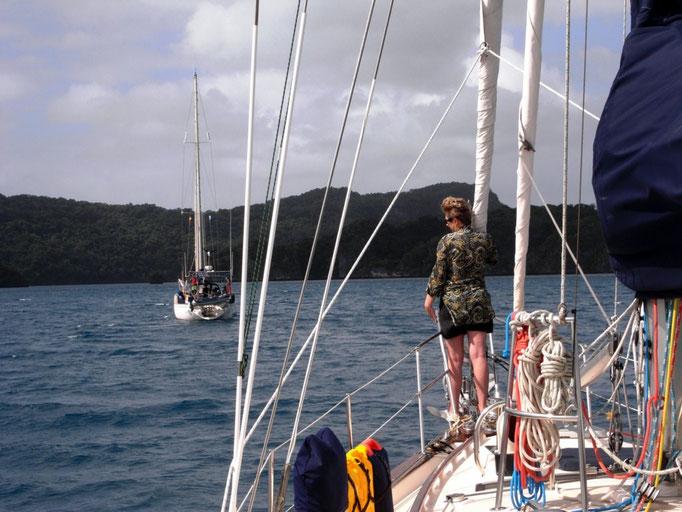 Navegando junto los amigos del Mediterraneo a Bay of Islands